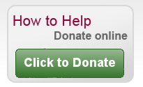 How to Help  Donate Online